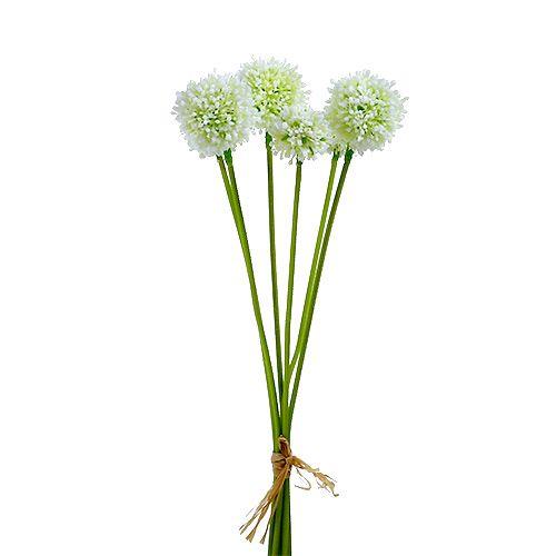 Allium 35cm Weiß 6St