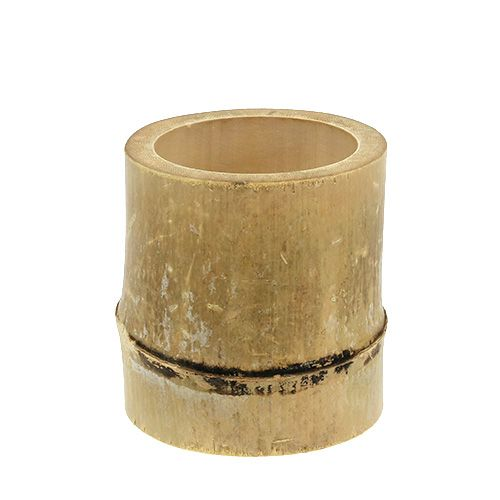 Bambus-Pflanzgefäß Ø7cm H10cm