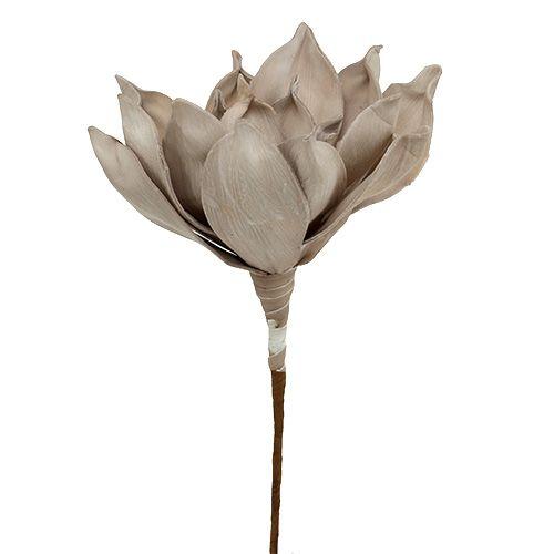 Blütenzweig Foam Grau 65cm