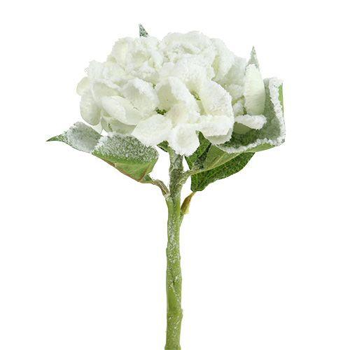 Hortensie Weiß beschneit 33cm 4St