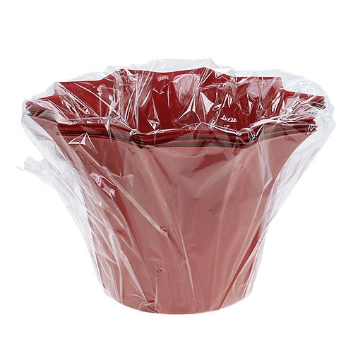 blumentopf plastik rot 12cm 10st gro handel und lagerverkauf. Black Bedroom Furniture Sets. Home Design Ideas