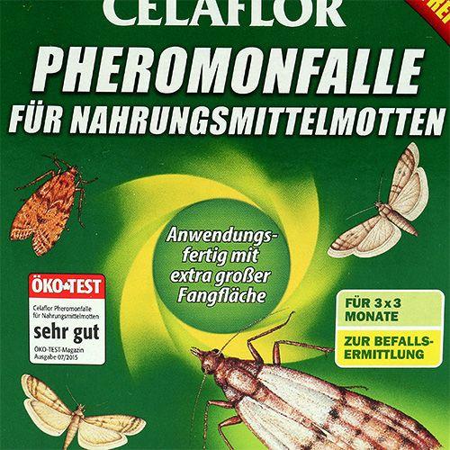 Celaflor Pheromonfalle für Nahrungsmittelmotten 3St