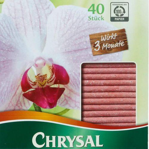 Chrysal Düngestäbchen für Orchideen 40St