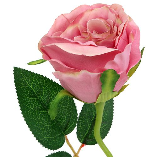 Deko rose 6cm altrosa l50cm 1st gro handel und lagerverkauf for Altrosa deko