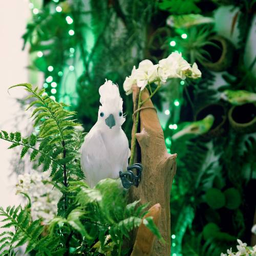 Deko Kakadu mit Federn Weiß L30cm