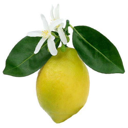 Dekoobst, Zitronen mit Laub Gelb 9,5cm 4St