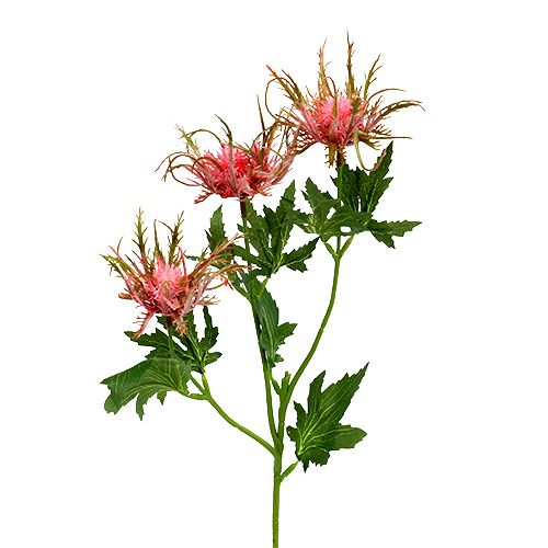 Distel Zweig Rosa, Grün L67cm 4St