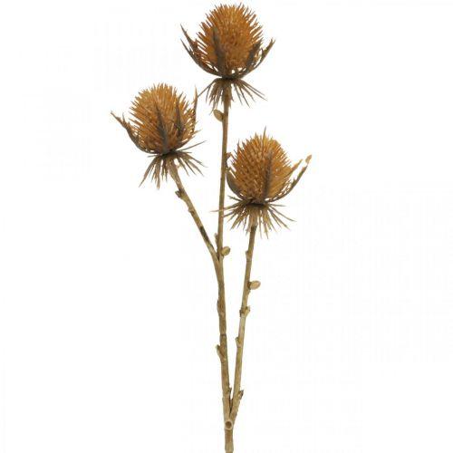 Distel Zweig Braun Kunstpflanze Herbstdeko 38cm