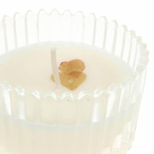 """Duftkerze """"Festliche Früchte und Vanille"""" Ø6,5cm H9cm"""