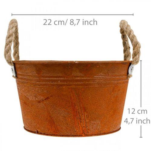 Metalltopf mit Seilgriffen, Pflanzschale, Herbst, Edelrost Ø22cm H12cm