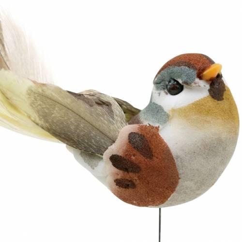 Vogel am Draht 5,5cm Bunt 9St