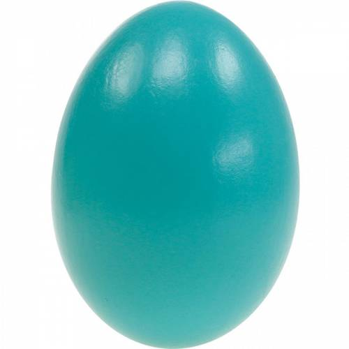 Gänseeier Türkis Ausgeblasene Eier Osterdeko 12St