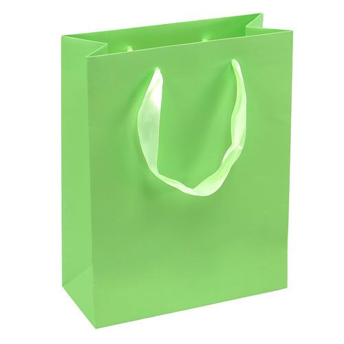 Geschenktüte Hellgrün 23cm x 18cm x 8cm