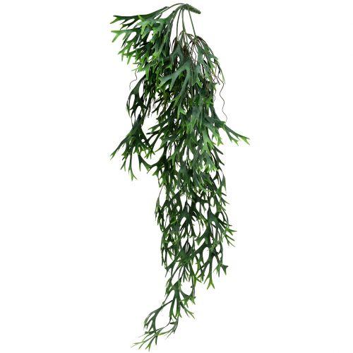 Geweihfarnbusch hängend 84cm