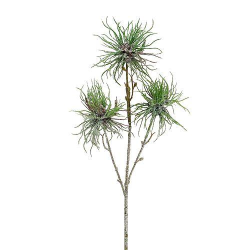 Hamameliszweig 44cm Grün, Silber 1St