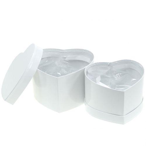 Herzbox Blumenbox Weiß 14/16cm 2St