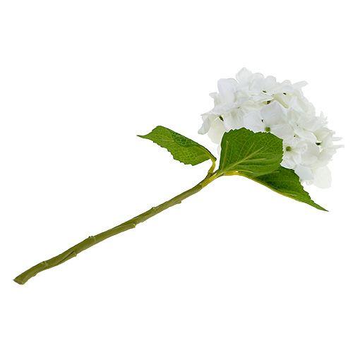 Hortensie 35cm Weiß