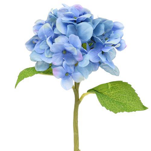 Hortensie Blau 36cm