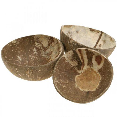Kokosnuss Deko Schale Natur Poliert 6St