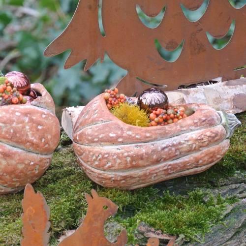 Kürbis zum Bepflanzen Orange 28×15×14cm