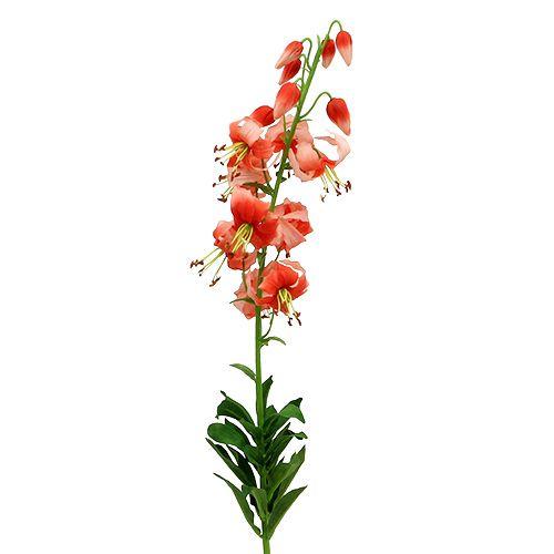 Lilie 87,5cm lachs