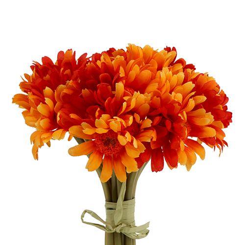 Margeritenbund Orange 13St.
