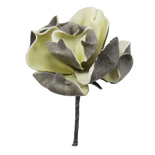 Magnolia mini Grau Ø 8cm L14cm 6St