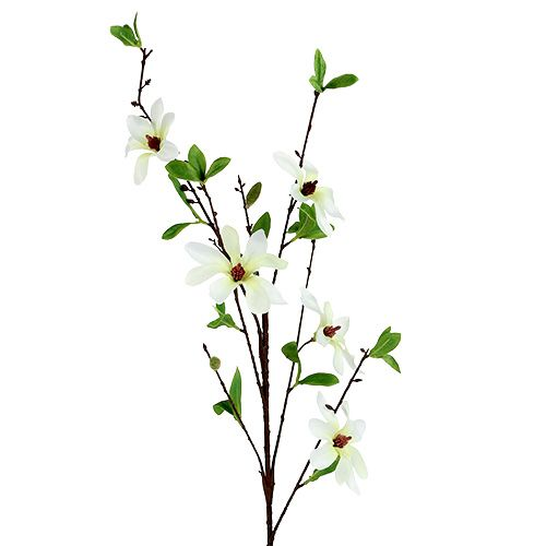 Magnolienzweig Weiß-Grün 94cm