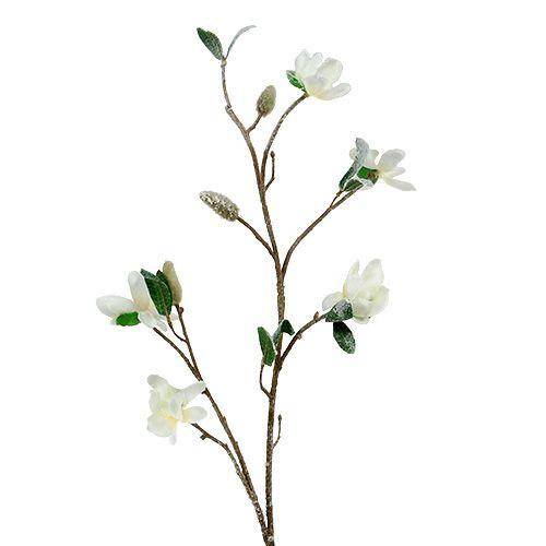 Magnolienzweig weiß L 82cm mit Schnee
