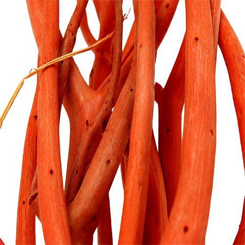 Mitsumata Zweige Orange 34-60cm 12St