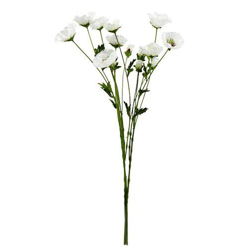 Mohnblume Klatschrose weiß 3St