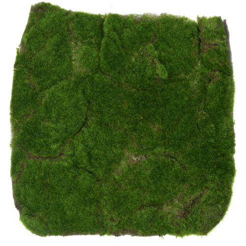 Moosmatte Grün 35cm x 35cm