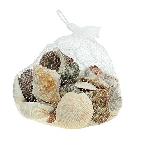 Muschelmix für Maritim-Dekoration Natur 400g