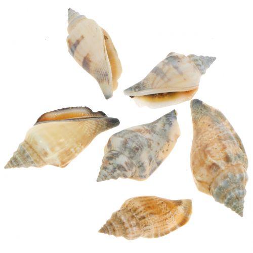 Muschel Mix Natur 3cm – 5cm 200g