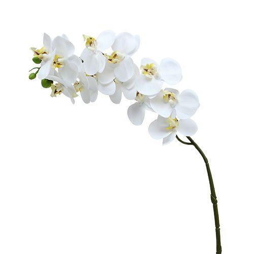 Orchideenzweig Weiß L58cm