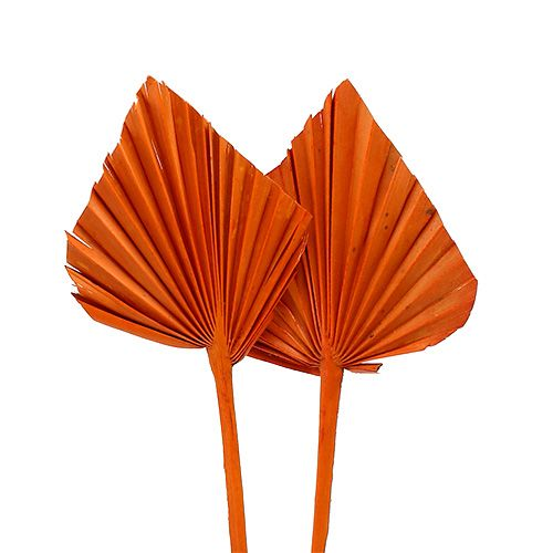 Palmspear mini Orange 100St