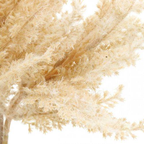 Künstliches Pampasgras Creme Trockenfloristik 35cm 4St