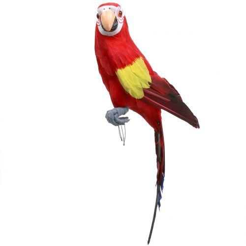 Deko Papagei Rot 44cm