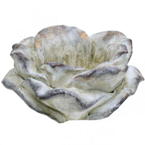 Beton-Rose, Gartendeko, Pflanzrose, Trauerfloristik Grau, Apricot, Violett Ø12cm L26,5cm H11cm