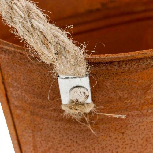 Metallschale mit Henkeln, Herbstdeko, Pflanzgefäß mit Edelrost L22cm H11cm