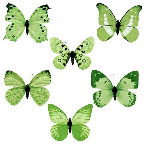Schmetterling Grün am Clip 10cm - 11cm 6St