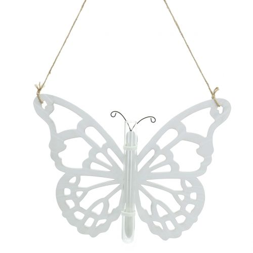 Schmetterling mit Reagenzglas zum Hängen 19x24cm 3St