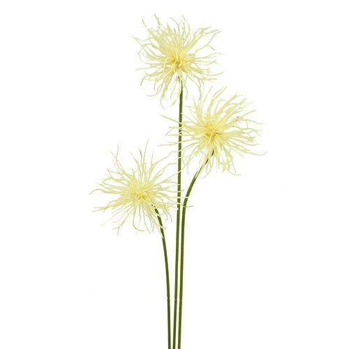 Seidenblumen Xanthium creme 63cm 4St