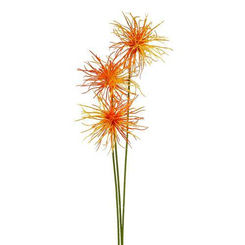 Seidenblumen Xanthium Orange 63cm 4st