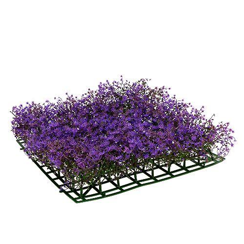 Sternblütenmatte 25x25cm Purple