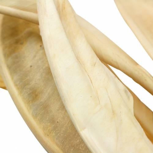 Strelitzienblätter gebleicht 10St Trockendeko