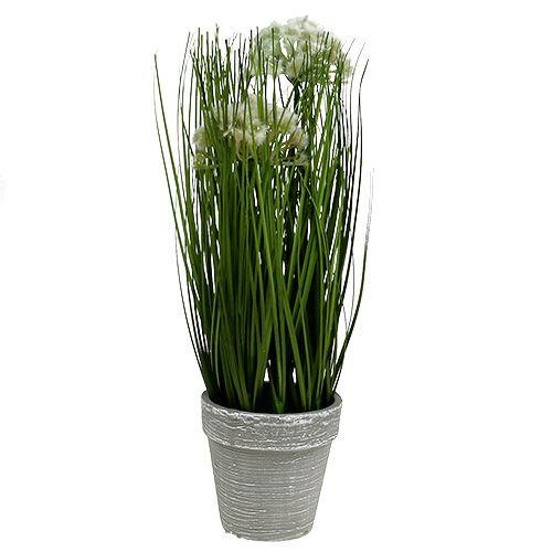 Tischdeko Deko-Gras im Topf Grün 30cm