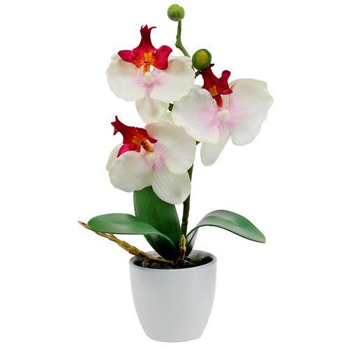 tischdekoration orchidee im topf creme h29cm gro handel. Black Bedroom Furniture Sets. Home Design Ideas