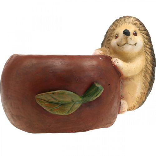 Pflanzgefäß, Apfel mit Igel, Herbstdeko, Übertopf, Keramik Ø16cm H22cm B33cm