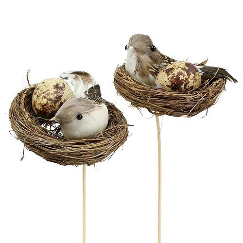 Vogelnest am Stab Ø7cm L24cm 6St